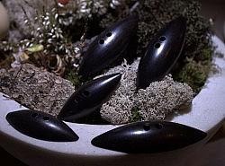 Boutons - Bûchettes en bois noir 1