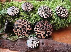 Boutons - Fleurs noires sur bois 1