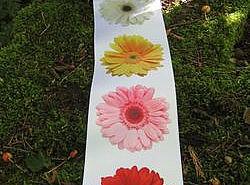 Ruban - Satin large fleuri 1