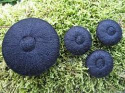 Bouton - recouvert de laine 1