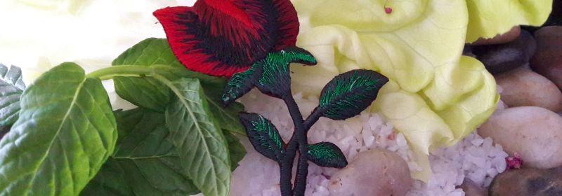 Motif – Branche de rose rouge