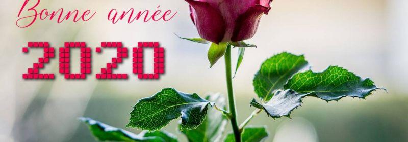 Bonne santé et meilleurs voeux! Be healthy and best wishes!